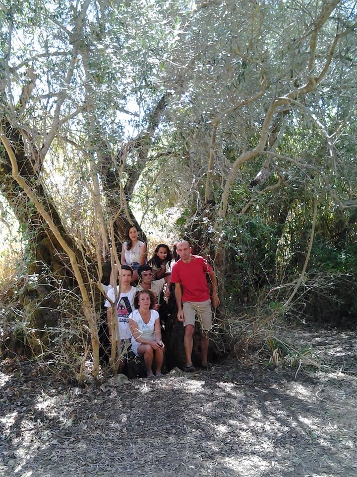 oliveira-familia